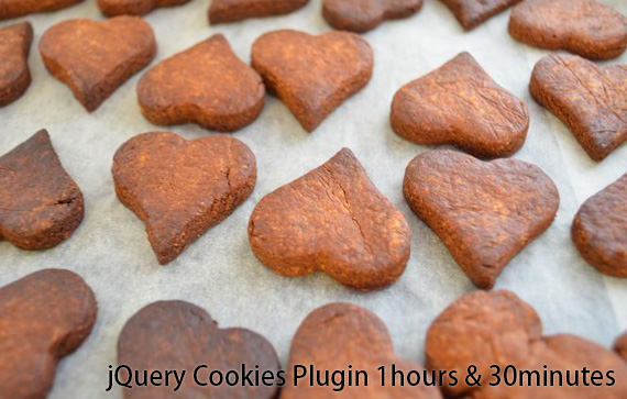 jQuery Cookie Plugin 1hours & 30minutes