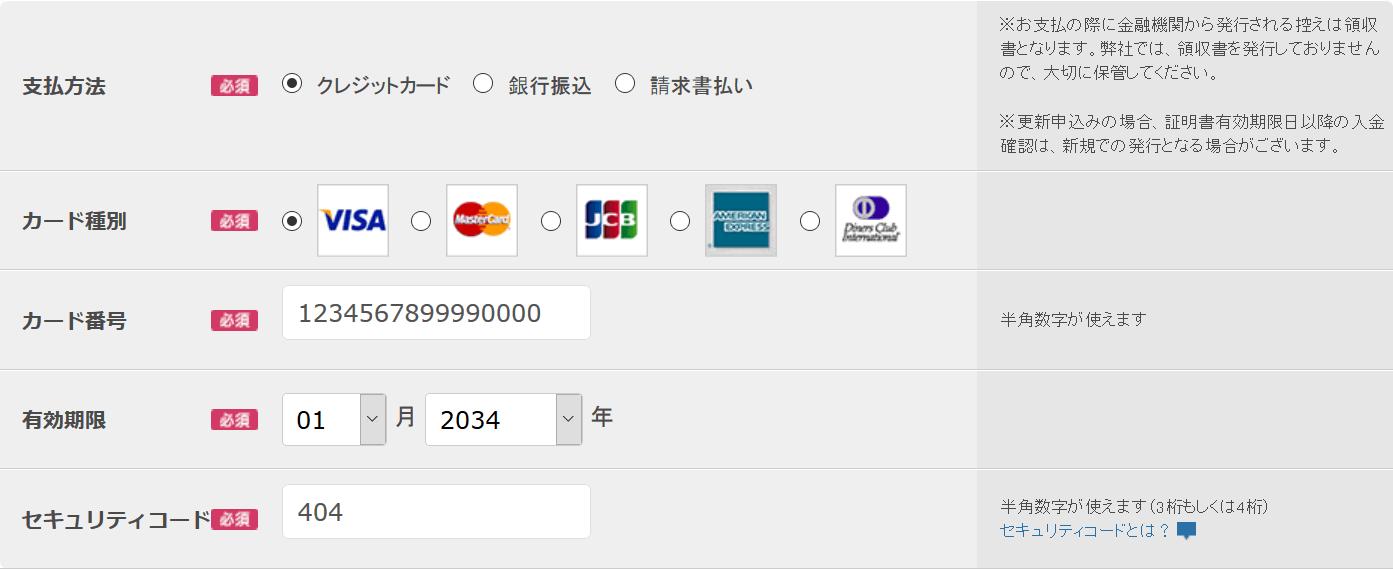 支払いはクレジットカード、銀行振込、請求書払いから選択。