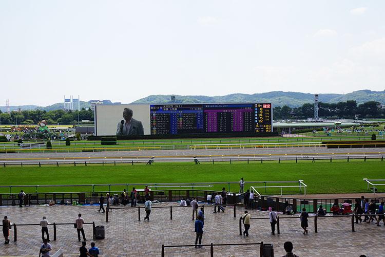 ウマ娘の聖地・府中東京競馬場安田記念とJRA競馬博物館に行った感想