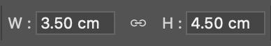 貼り付けた写真は「編集」=>「自由変形」(Command + T)でW3.5cm、H4.5cmを指定してリサイズ